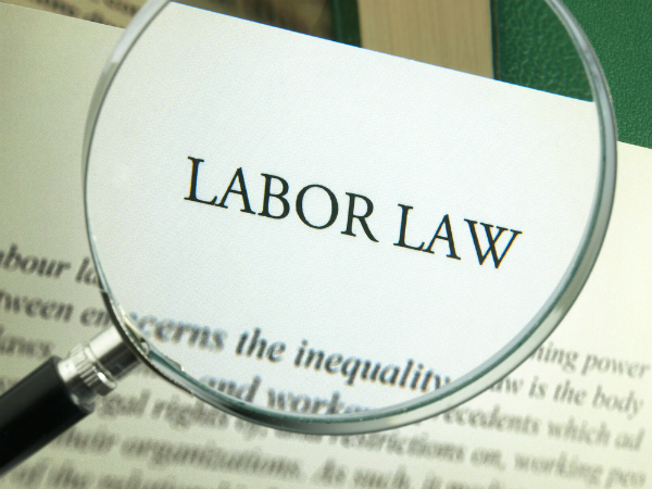 Labor Laws by Company Size - Pathway HR Solutions